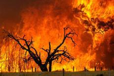 دانلود مقاله انواع حريق